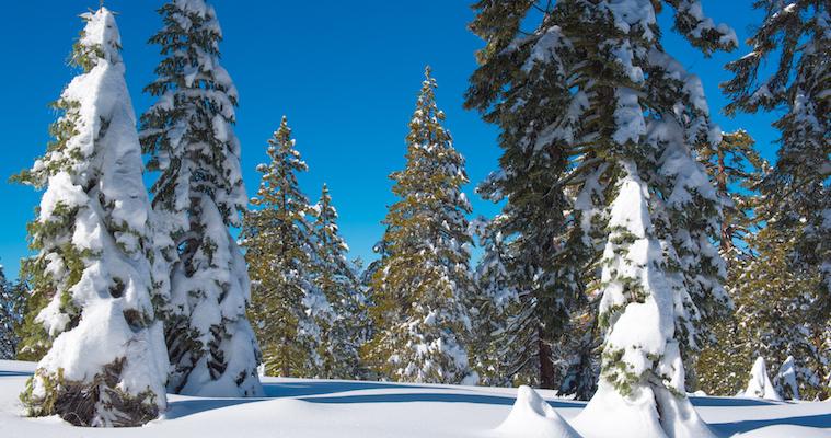 Yosemite-National-Park-Snowshoeing